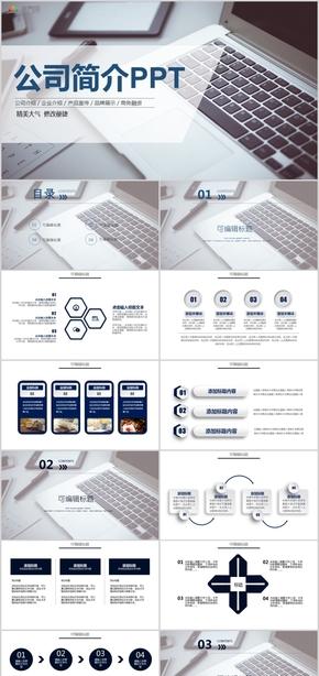 高端商务公司介绍 企业介绍产品宣传品牌展示商务融资PPT模板
