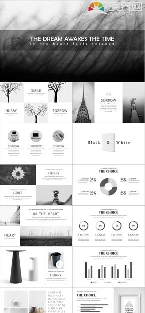 多圖黑白灰簡約歐美雜志風產品設計廣告咨詢通用模板