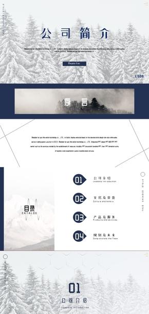 演界网蓝白雪地简约公司简介企业介绍模板