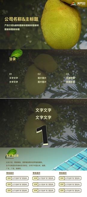 黄粽米色产品介绍企业项目PPT模板
