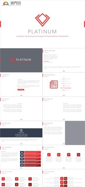 商業項目策劃模板