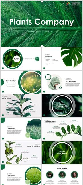 绿色现代公司介绍PPT模板