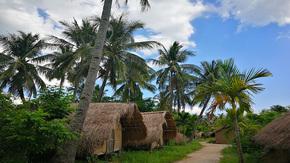 热带椰林古村