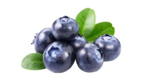 新鲜水果蓝莓