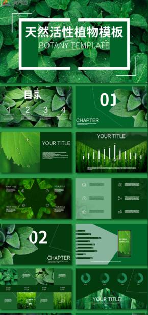綠色植物模板商用通用PPT模板