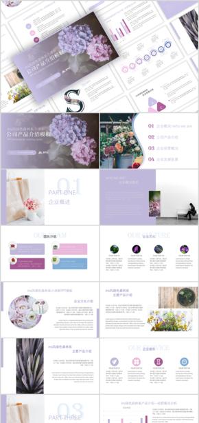 INS彩色花卉小清新公司宣傳產品發布工作總結匯報通用PPT模板