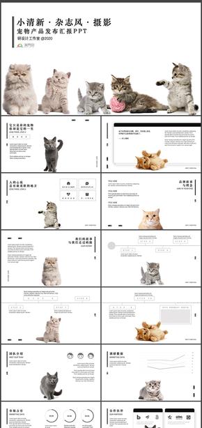 黑白小清新杂志风摄影宠物产品发布汇报PPT模板