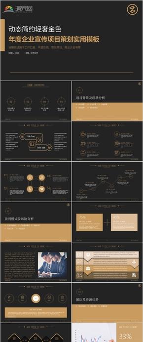 企業宣傳項目策劃實用簡約金色模板