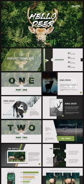 大自然生活商業計劃書旅游計劃書總結計劃ppt模板