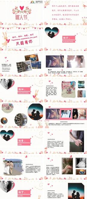 粉色情人节表白、婚礼、恋爱活动策划ppt模板