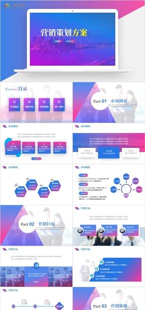 2020年营销策划方案项目推广网络营销PPT