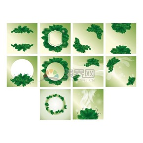 綠色小清新植物背景底框合集