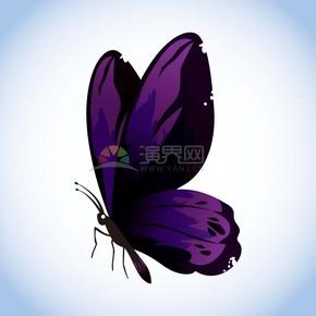 紫色蝴蝶卡通动物有趣创意设计