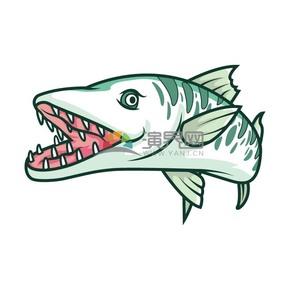 卡通動物鯊魚素材