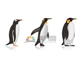 企鹅的成长卡通元素