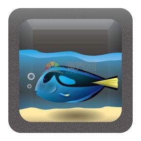 酷炫的海底生物鱼