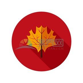 红色背景的黄色枫叶图标