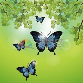 綠色樹葉背景蝴蝶素材