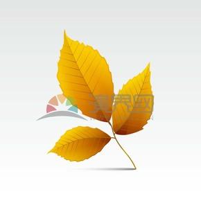 手绘秋天黄色渐变叶子图标素材