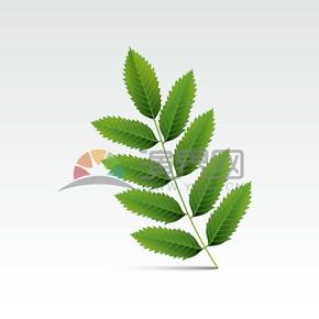 手绘绿色渐变叶子图标素材