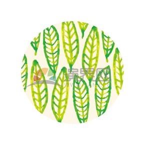 手绘绿色渐变水彩叶子素材