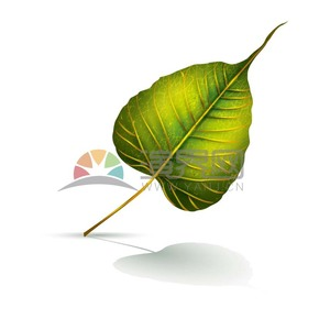 手绘绿色渐变叶子纹路立体精美素材