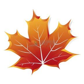 秋天秋日落叶枫叶立体矢量图