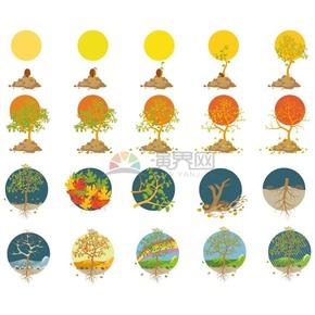 不同季节的树木成长过程