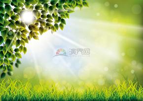 春日绿色树叶青草背景素材