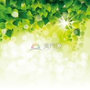 春日个性创意绿叶背景