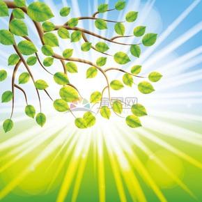 春日绿色树叶背景素材