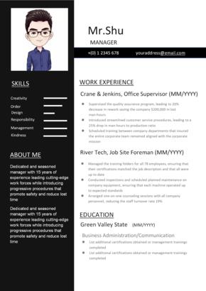 【舒先生】簡約個人求職競聘一頁紙簡歷模板