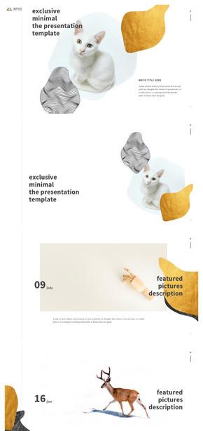 创意型商业总结汇报