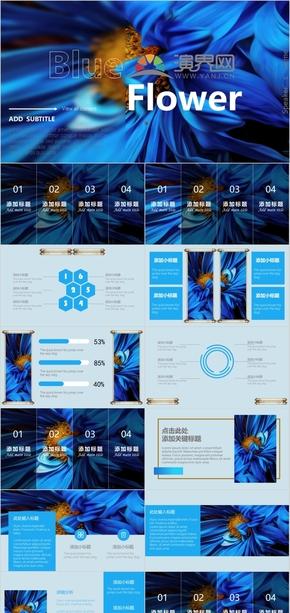 藍色花朵動畫通用商務教育課件PPT模板