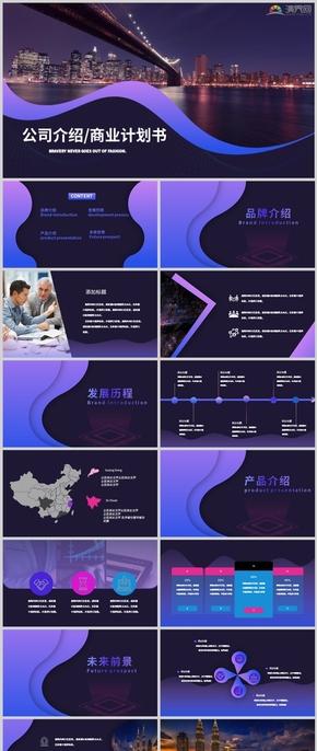 蓝紫高级公司介绍大气商业计划书品牌介绍互联网科技项目汇报PPT模板
