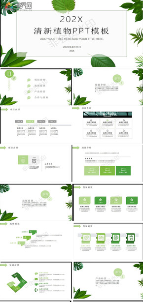 清新绿色植物叶子背景PPT模板