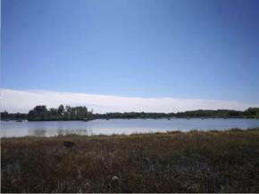 藍色濕地景色