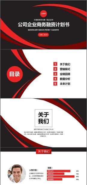 大气公司企业商务融资计划书PPT