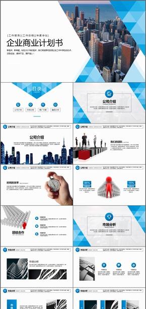 高端企业公司商业计划书PPT