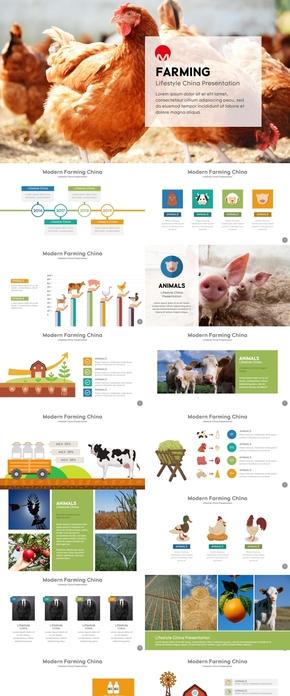 生态养殖畜牧业农业keynote模板