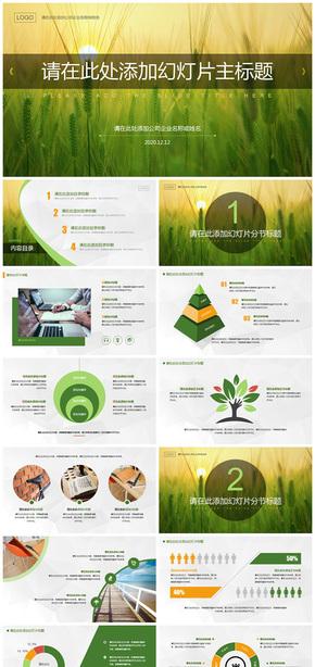 黄绿色麦穗环保清新简洁风格教育职场通用PPT模板