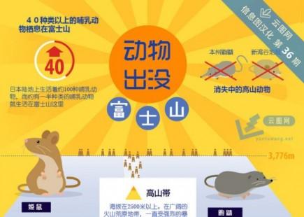 【演界信息图表】扁平卡通-富士山的动物现状
