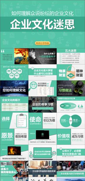 74-企业文化迷思(布衣公子作品)2017.05.25版@teliss