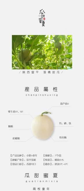 【再晨】2018农产品水果系列陕西张桥颜良甜瓜产品介绍详情页