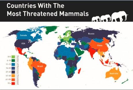 【演界信息图表】炫彩风-世界上各地区稀有动物的的