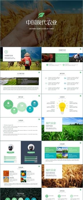 中国现代农业农产品招商引资PPT模版