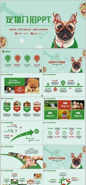 【萌宠来啦】清新宠物店宠物领养宠物美容宠物介绍PPT