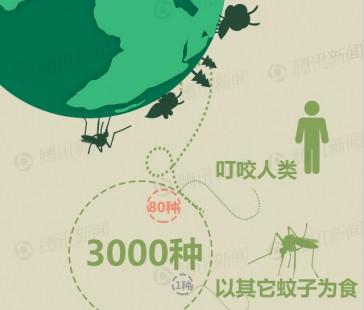 【演界信息图表】扁平可爱-你为何爱招蚊子