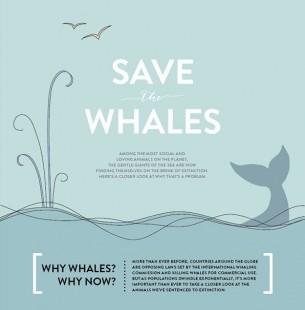 手绘风海洋鲸鱼主题动画ppt(含简笔画绘制动画)