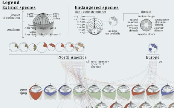 【演界信息图表】动物-已经灭绝的物种目录